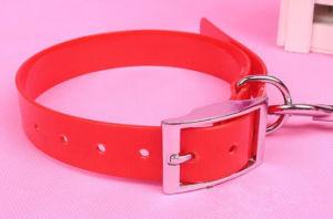 Hot Sale Pet Dog Colorful Collar (L007) pictures & photos