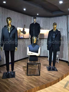 Origin New Mannequin for Windows Collection pictures & photos