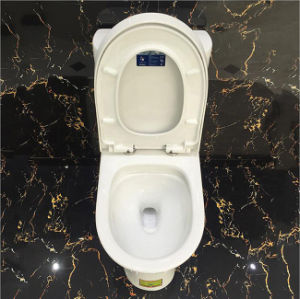 Hot Selling One Piece Vitreous China Toilets pictures & photos