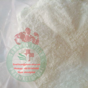 98% Purity Manufacture Slimming L-Carnitine Base Powder Weight Loss pictures & photos