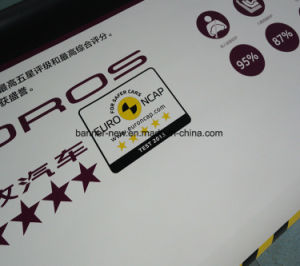 High Resolution Outdoor Double Side Printing Vinyl Banner Advertising (SS-VB111) pictures & photos