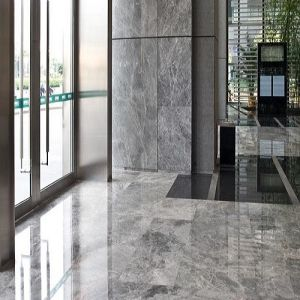 Silver Sable Marble Floors for Bathroom/Hotel pictures & photos