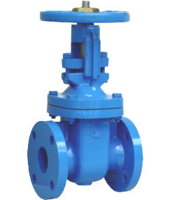 Bs 5163 Rising Stem Resilient Gate Valve pictures & photos