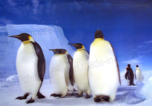 Penguin 3D Products (3D041) pictures & photos