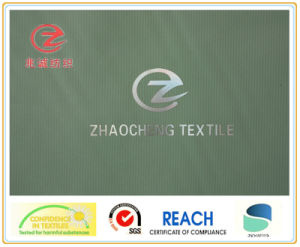 390t Marxism Style H-Line Nylon Fabric (ZCGF010)