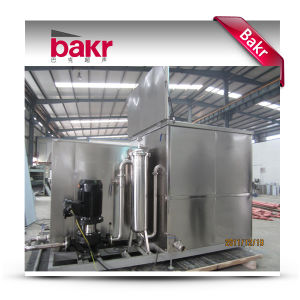 Industrial Ultrasound Cleaning Equipment (BKX-4800) pictures & photos