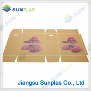 Light Weight PP Corrugated Box for Packing /Turnover Box pictures & photos