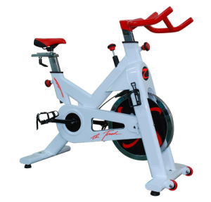 2013 Newest Spinning Bike / Indoor Spin Cycle (SK-A580A) pictures & photos