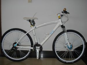 High Grade Aluminum Frame Mountain Bike (FP-MTB-A023) pictures & photos