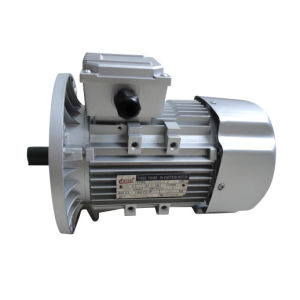 Electric Motor on Three-Phase (CE, ISO9001 Approval)