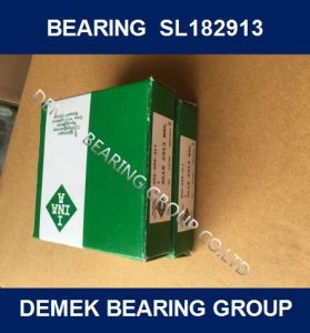 Full Complement Cylindrical Roller Bearing SL182913 pictures & photos