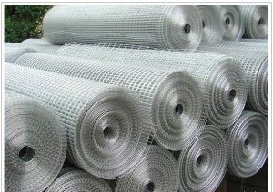 Hot Sale Welded Wire Mesh pictures & photos