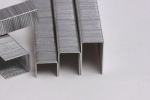 Industrial Wire Staple (80 Series) pictures & photos