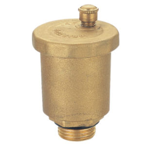 Brass Air Valve (WSD-8005)