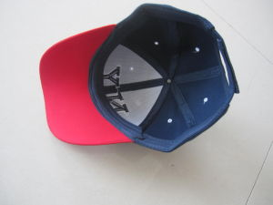 Baseball Cap, Promotion Caps, Travel Caps, Sport Caps, Hat pictures & photos