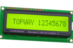 16X1 Character LCD Display Alphanumeric COB Type LCD Module (LMB161A) pictures & photos