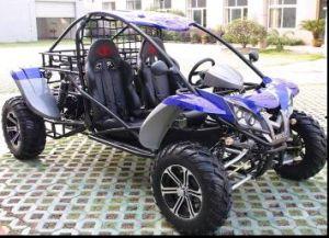800CC Go Kart Efi System (GBTGK800(4X4))