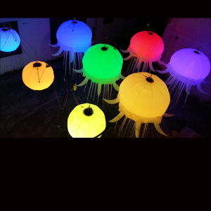 Beautiful Inflatable Jellyfish Star for Event Decorations pictures & photos