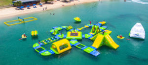 Giant Inflatable Adult Big Water Slides for Sale pictures & photos