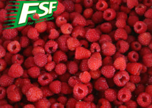 IQF Raspberries Wholes