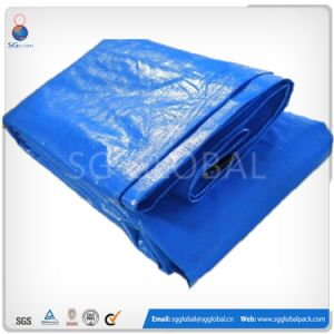 Laminated Green PE Tarp Sheet for Truck Cover pictures & photos