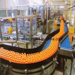china complete fruit juice production line china juice production line fruit juice production. Black Bedroom Furniture Sets. Home Design Ideas