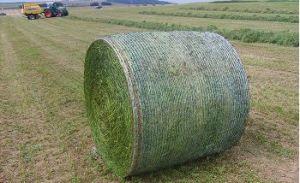 PE Bale Net