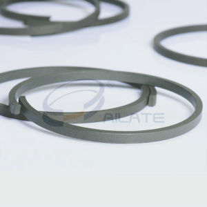 KZT PTFE Seal pictures & photos