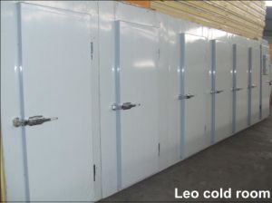 Large Scale Cold Room Project Cold Room Chiller (LAIAO) pictures & photos