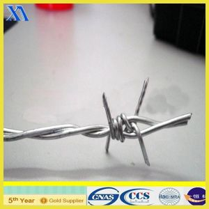 Anping Galvanized Double Twist Barbed Wire (ISO9001) pictures & photos