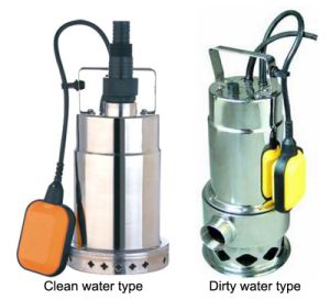 Stainless Steel Garden Submersible Pump (DFS-S) pictures & photos