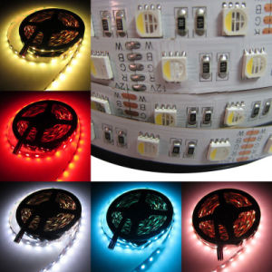 5050 RGBW 4in1 Color 60LED/M LED Strip Lighting pictures & photos