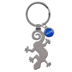 High Quality Metal Die Casting Keychain with Nickel Color pictures & photos