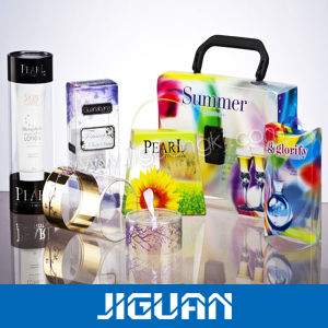 Retangle Clear Printable Plastic Cosmetic/Perfume Packaging Box pictures & photos