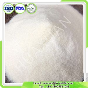 Professional Supplier Gelatin with Different Mesh pictures & photos