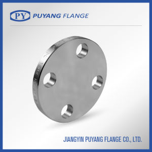 DIN Standard Stainless Steel Type05 Blind Flange (PY00103) pictures & photos