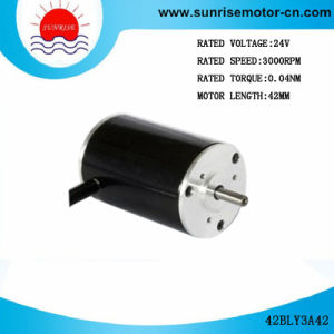 42bly3A42 BLDC Motor/Low Voltage DC Motor Brushless DC Motor BLDC Motor pictures & photos