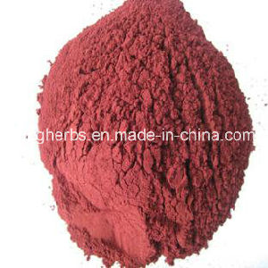 100% Natural Red Yeast Rice Extract: 0.4%-3% Lovastatin; 0.4%, 1.5% Monacolin K. pictures & photos