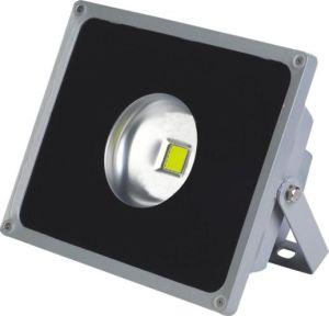 LED 30W RGB LED Flood Light LED Light pictures & photos