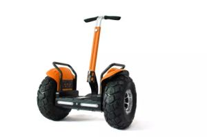 19 Inch off-Road Self-Balancing Electric Motorcycle Scooter with Handle pictures & photos