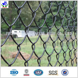 PVC Coated Chain Link Fence (hpwj-1012) pictures & photos