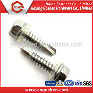 Hex Flange Head Self Drilling Screw and Washer pictures & photos