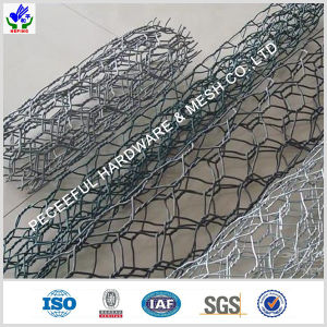 Galvanized Heaxgonal Wire Mesh (HPBG-0522) pictures & photos