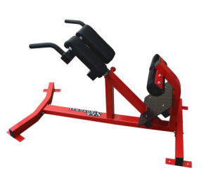 Back Extension of Fitness Hammer Strength Gym Machine pictures & photos