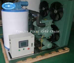 High Quality Factory Supply 5000kg/24 Flake Ice Machine pictures & photos