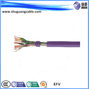 Fluoride Insulation PVC Sheath Control Cable pictures & photos