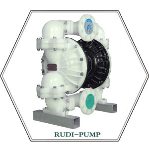 RD80 Air Operated Diaphragm Pump pictures & photos