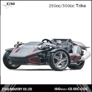 250cc EEC Trike Scooter for Adult pictures & photos