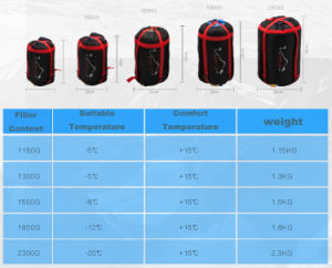 Best Price for Winter Spring Summer Autumn Sleeping Bags pictures & photos