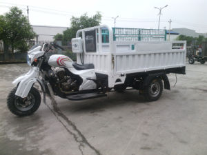 Three Wheeler Motorbike for Heavy Cargo Carrying with CCC Certification pictures & photos